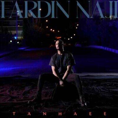 Fardin 400x400 - دانلود آهنگ فردین ناجی تنهایی