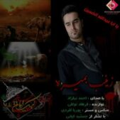 دانلود مداحی احمد نیکزاد زینب بمیره