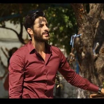 hayatsevinceguzel1 - دانلود آهنگ تیتراژ سریال ترکی زندگی با عشق زیباست